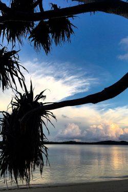 coconut-beach-resort-beach-blue-gold-sunset