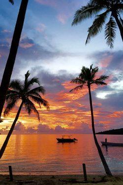 coconut-beach-resort-beach-colourful-calm-water
