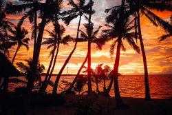 coconut-beach-resort-beach-rich-sunsets