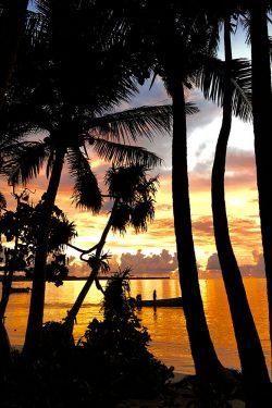 coconut-beach-resort-beach-sunsets-on-blue-lagoon
