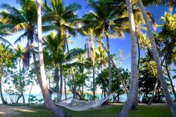 coconut-beach-resort-grounds-relax-hammock