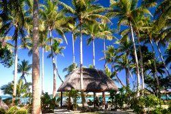 coconut-beach-resort-grounds-relax-rejuvinate