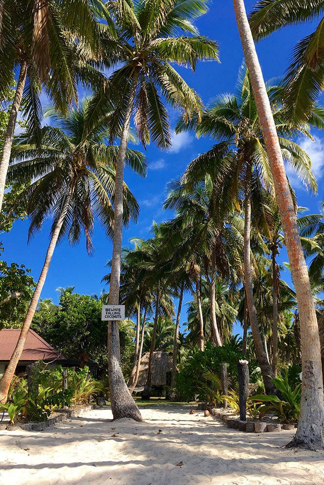 coconut-beach-resort-grounds-to-beach-01