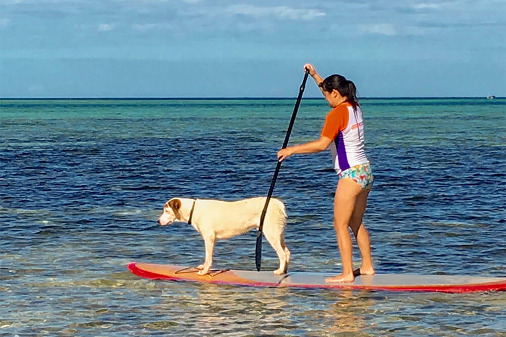 stand-up-paddle-board-coconut-beach-resorts