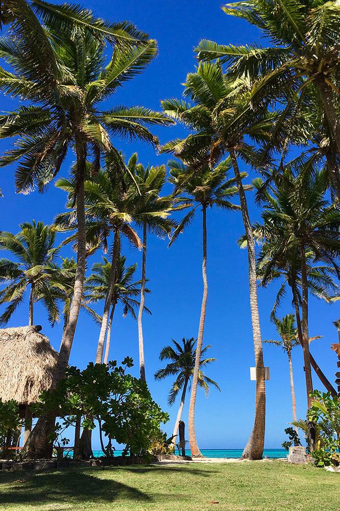 coconut-beach-resort-grounds-to-beach-02