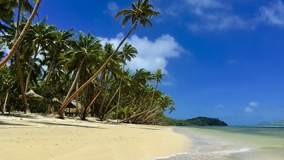 coconut-beach-resort-tropical-beach-fiji